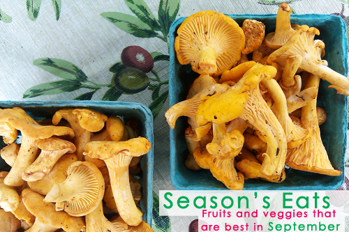 September Seasonal Food: Chanterelle Mushroom Picture - Dresses & Appetizers