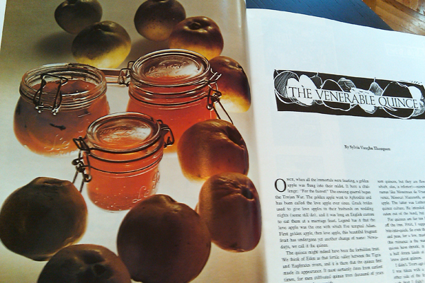 Gourmet Magazine, October 1974: Quince Jelly, Marmalade, Conserve Picture- Dresses & Appetizers
