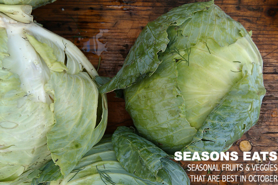 October Seasonal Food, Cabbage Picture - Dresses & Appetizers