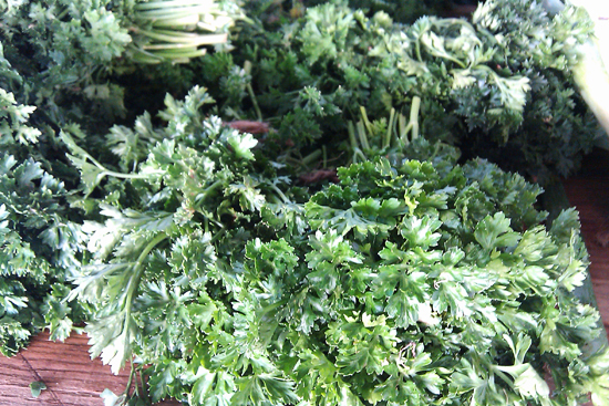 Curly Parsley Picture, Dresses & Appetizers